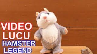 Video KOMPILASI VIDEO LUCU HAMSTER LEGEND GUDANG TUTORIAL MP3, 3GP, MP4, WEBM, AVI, FLV Maret 2019