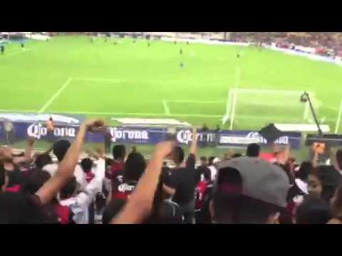 Te Amo | Barra 51 vs Santos | 2016 | Atlas | Zona Rojinegra - Barra 51 - Atlas