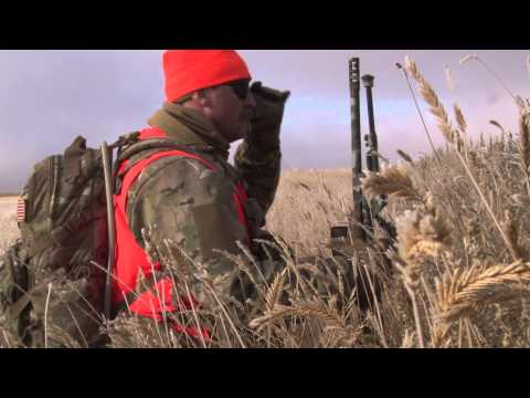 Navy Seal and Team Hunting Mule Deer in Montana