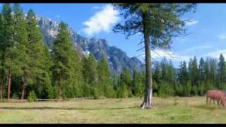 Creston (BC) Canada  City new picture : 40 Acre Horse Farm for Sale in Creston BC