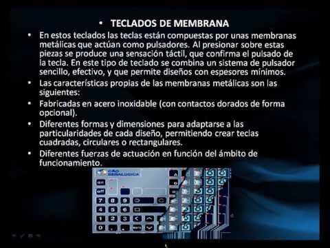 EL TECLADO Y EL MOUSE