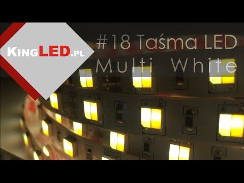 Taśma LED Multi White 2700K - 7000K #18 - Poradnik od KINGLED_pl