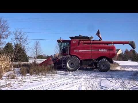 Winter Corn Harvesting 2007 Case 7010 Combine