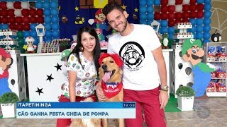 Casal organiza festa de aniversário para cãozinho de estimação e faz sucesso nas redes sociais