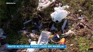 Marília: população transforma terreno em lixão