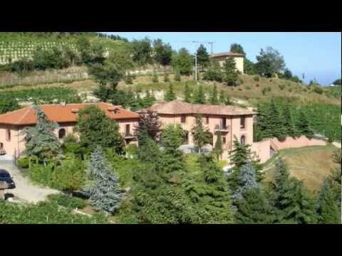 Vineyard in Italy for Sale, from Piedmont Properties - P310