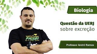 A primeira fase da UERJ já é neste domingo 16 de julho e a dica de hoje é com o professor de biologia André Ramos,...