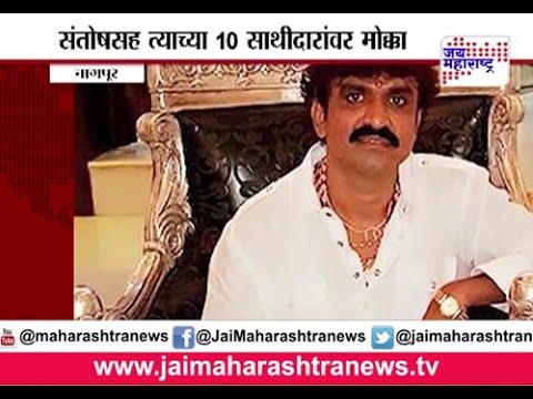 Video Two new cases against gangster Santosh Ambekar in Nagpur download in MP3, 3GP, MP4, WEBM, AVI, FLV January 2017