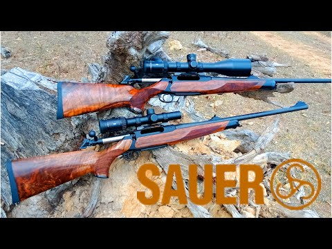 Sauer 404 - A Work Of Art