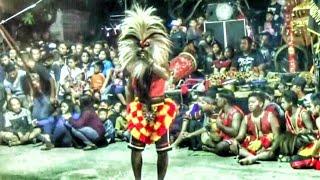 ATRAKSI PENARI GANONGAN (Bujang Ganong)---Rogo Samboyo Putro--Jaranan Terbaru