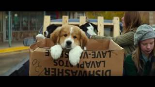 Trailer of A Dog's Purpose (2017)