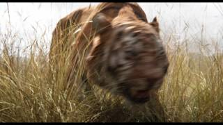 Video The Jungle Book (2016) MP3, 3GP, MP4, WEBM, AVI, FLV Oktober 2018