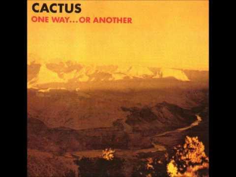 Tekst piosenki Cactus - Rockout Whatever You Feel Like po polsku