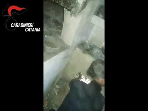 Sequestro di armi: il video dei carabinieri