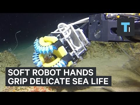 Revolutionary Soft Grip Robot for Underwater Exploration