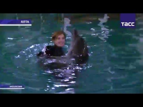 Поклонская с дельфинами