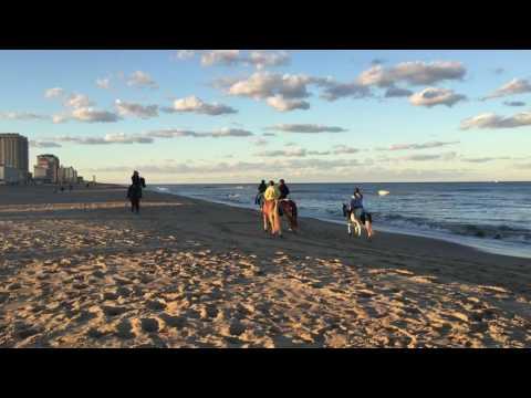 Horseback Riding on the Beach at Virginia Beach