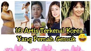 Video 10 Artis Terkenal Korea yang pernah gemuk MP3, 3GP, MP4, WEBM, AVI, FLV April 2018