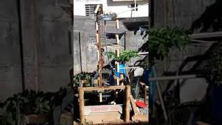 Elevador de água puxado por uma roda d'agua.