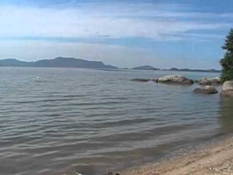 JULIN BORGES  CANTOR JULIO CEZAR ferias em PALHOÇA praia da DO TOMÉ SC