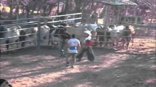 Dia De Rodeo En La Virtud Lempira