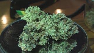 Colorado Chem Marijuana Monday at Night by Urban Grower