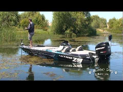 Largemouth Bass Fishing Punchin the Fake Fish
