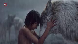 Video 7 Kisah Viral Anak yang Dibesarkan oleh Hewan Liar MP3, 3GP, MP4, WEBM, AVI, FLV Oktober 2017