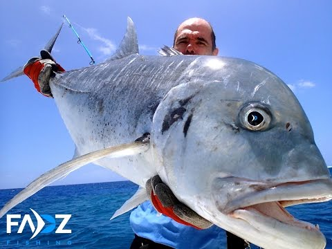 Jigging - Dogtooth Tuna, GT - Jigging and popping action caught on GoPro Hero 2 and 3.