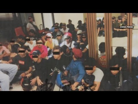 Video Cops arrest 45 youths in sex and drugs party on Deepavali download in MP3, 3GP, MP4, WEBM, AVI, FLV January 2017