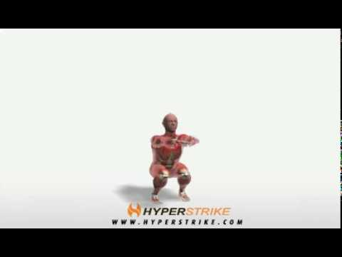 Exercise Videos- Bodyweight Squats