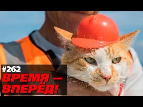 Вот как Крымский мост повлиял наРоссию. Кто-то ждал другого? (Время-вперёд! #262)
