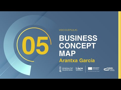 VIDEOCÁPSULA BUSINESS CONCEPT MAP
