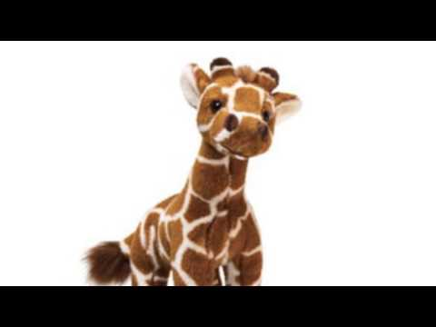 Video Video advertisement on the Giraffe Small 11 Plush