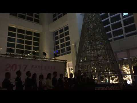 台北 101環保 LED 耶誕樹 12/6點燈