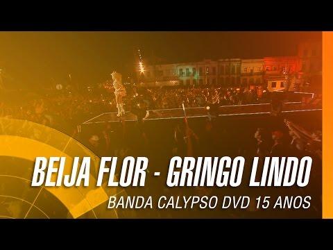 Banda Calypso - Beija flor / Gringo lindo