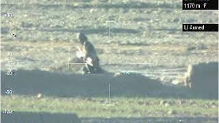 Video Taliban setting up ambush MP3, 3GP, MP4, WEBM, AVI, FLV Maret 2019