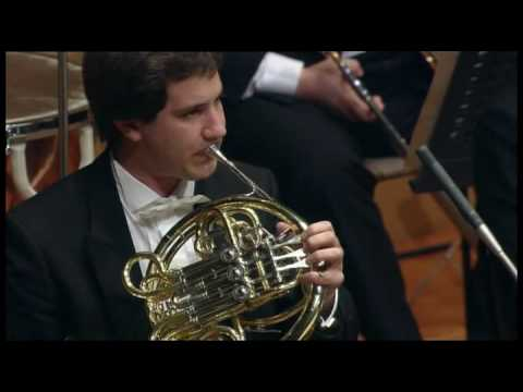 Stefan Dohr - Horn Solo of Tchaikovsky 5th Symphony, Second movement Horn: Stefan Dohr Conductor: Claudio Abbado Orchestra: Berliner Philharmoniker.