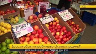 Випуск новин на ПравдаТУТ Львів 11 січня 2017