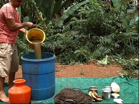 Oragnic Farming part 1 Hindi - जैविक खेति भाग १