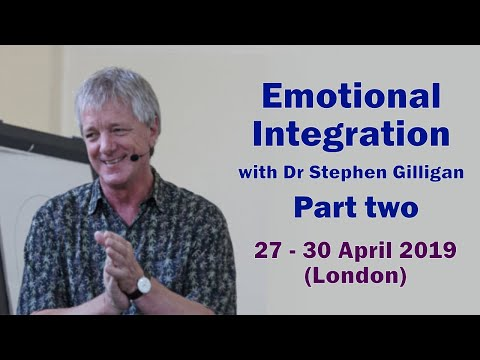 Interview with Stephen Gilligan' Emotional Integration - Part two