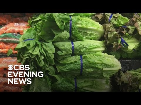 CDC issues warning not to eat romaine lettuce amid E. coli outbreak
