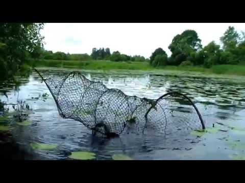 вентерь для рыбалки фото