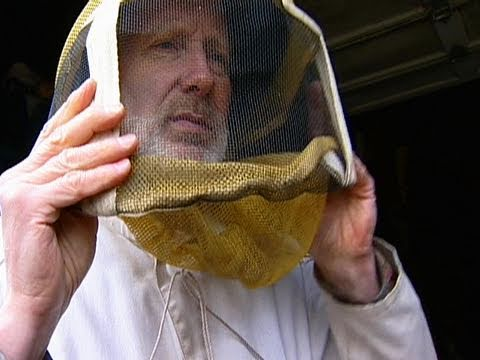 Beekeeping Basics: Getting Started