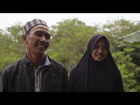 Producteurs de café Fairtrade indonésiens | CH