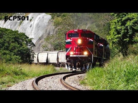 Ferromex y Ferrosur: Varios Trenes en Tuxpan Jalisco, Distrito Sayula