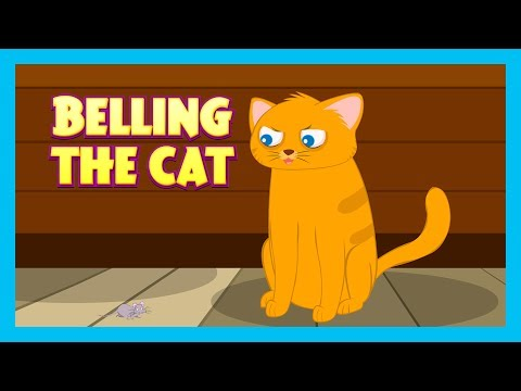 """""""BELLING THE CAT""""  