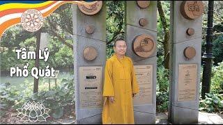 Duy Thức Tam Thập Tụng (2010) - Bài 15: Tâm lý phổ quát (Tâm sở biến hành) - Thích Nhật Từ