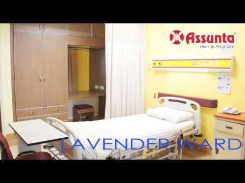 Video Assunta Hospital - Giving Birth @ Assunta Hospital download in MP3, 3GP, MP4, WEBM, AVI, FLV January 2017