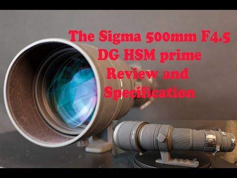 Sigma 500mm F4.5 DG HSM Prime Lens Review Part 1